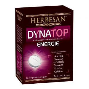 dynatop-energie