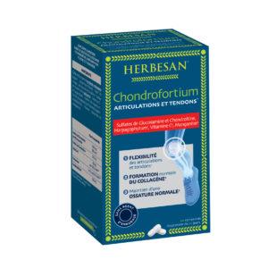 CHONDROFORTIUM_3D